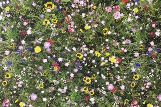 Garden Floral Print Runner 120